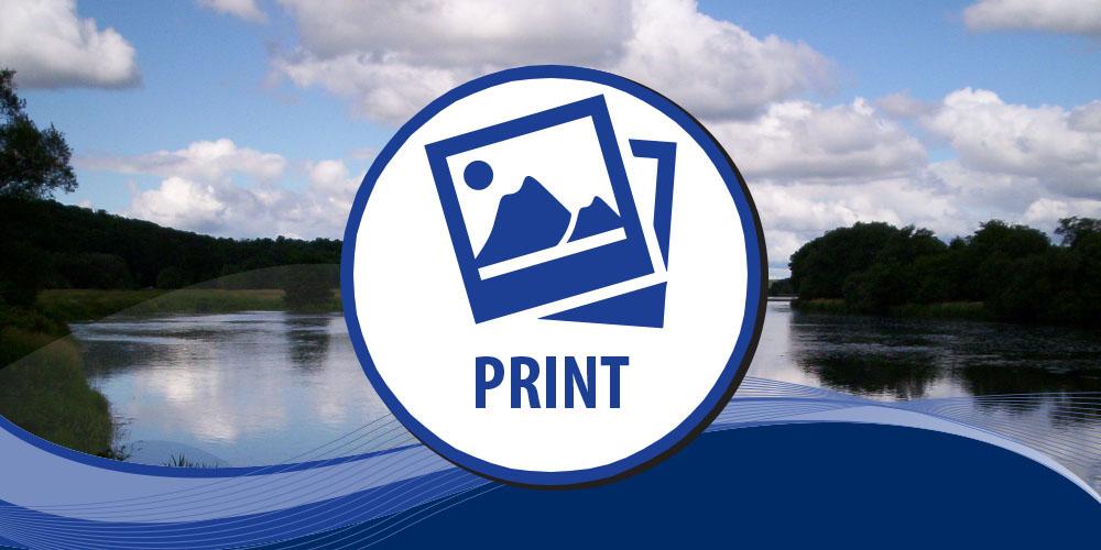 Gallery - Print